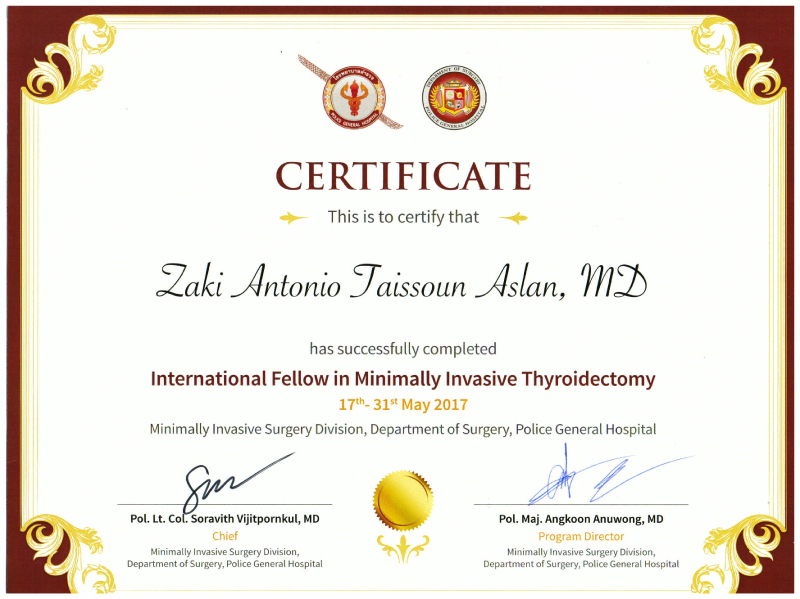 International Fellow in Minimally Invasive Thyroidectomy